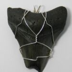 1209-08,megalodon,shark,tooth,handcrafted,CT,jewelry