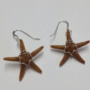 A starfish earring pair